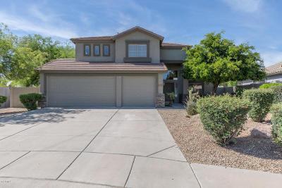 Gold Canyon Single Family Home For Sale: 6738 E Las Animas Trail