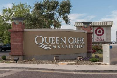 Queen Creek Single Family Home For Sale: 20640 E Ocotillo Road