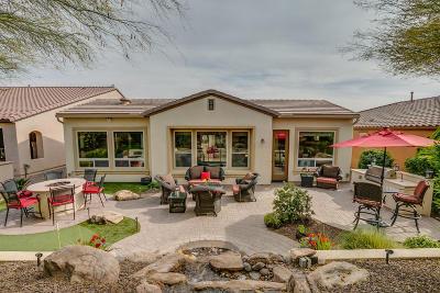 San Tan Valley Single Family Home For Sale: 1572 E Vesper Trail