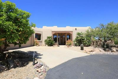 Rio Verde Single Family Home For Sale: 18402 E Four Peaks Place