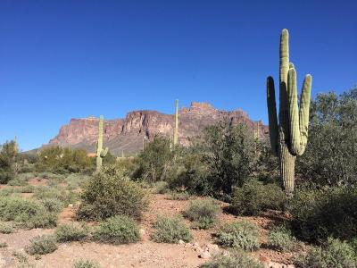 Apache Junction Residential Lots & Land For Sale: 744 N Moon Road