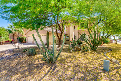 Chandler Single Family Home For Sale: 2491 W Binner Drive