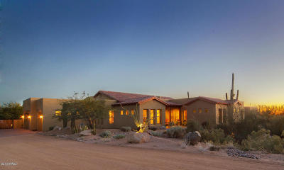 Carefree Single Family Home For Sale: 9019 E Cave Creek Road