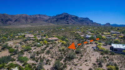 Gold Canyon Residential Lots & Land For Sale: S Tonto View