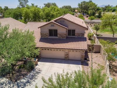 Glendale Single Family Home For Sale: 5913 W Poinsettia Drive