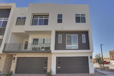 Condo/Townhouse For Sale: 1717 E Morten Avenue #17