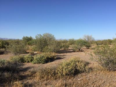 San Tan Valley Residential Lots & Land For Sale: E Horizon Trail