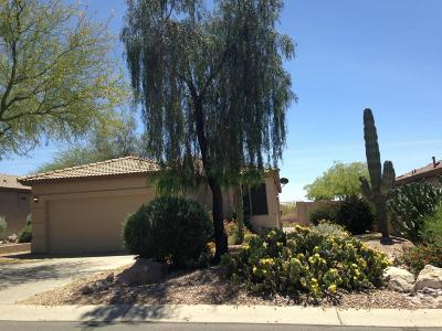 Pinal County Single Family Home For Sale: 5272 S Casa Prieto Drive