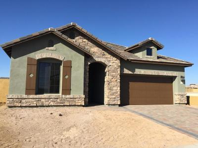 Single Family Home For Sale: 2102 N Canelo Hills