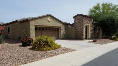 Maricopa County, Pinal County Single Family Home For Sale: 12540 W Maya Way