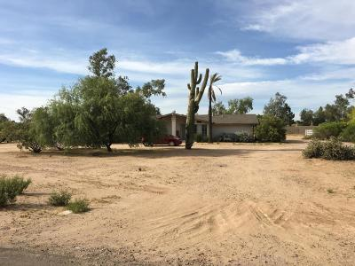 Scottsdale Single Family Home For Sale: 7102 E Paradise Drive