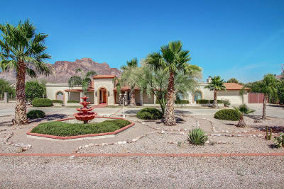 Apache Junction Single Family Home For Sale: 959 N Roadrunner Road