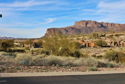 Quail Canyon, Quail Canyon At The Superstitions Residential Lots & Land For Sale: 8904 E Canyon Creek Drive