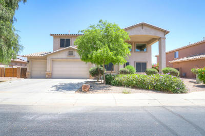Pinal County Single Family Home For Sale: 22163 N O Sullivan Drive