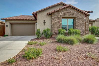 Buckeye Single Family Home For Sale: 20590 W Western Drive