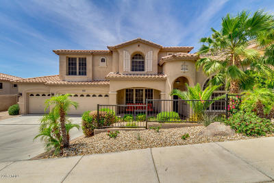Phoenix Single Family Home For Sale: 16208 S Reserve Drive