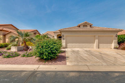 Maricopa County, Pinal County Single Family Home For Sale: 3174 N 150th Drive
