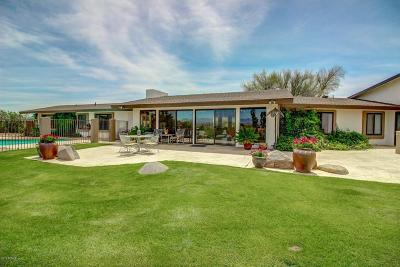 Wickenburg Single Family Home For Sale: 465 N Lazy Fox Drive