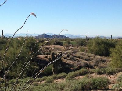 Scottsdale Residential Lots & Land For Sale: 9946 E Happy Hollow Drive