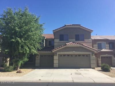Surprise Single Family Home For Sale: 17672 W Tasha Drive