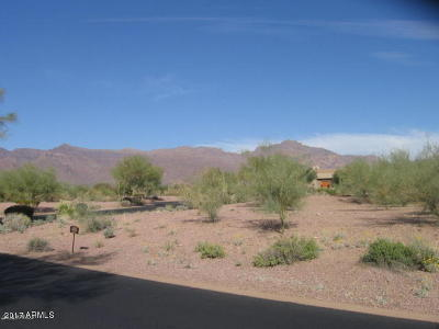 Gold Canyon Residential Lots & Land For Sale: 3505 S Ponderosa Drive