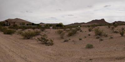 San Tan Valley Residential Lots & Land For Sale: W Rhea Road