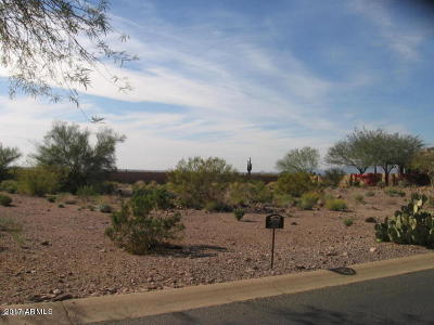 Superstition Mountain Residential Lots & Land For Sale: 2592 S Pinyon Village Drive