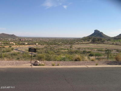 Superstition Mountain Residential Lots & Land For Sale: 9363 E Skyline Trail