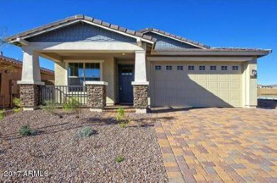 Peoria Single Family Home For Sale: 30636 N 137th Lane