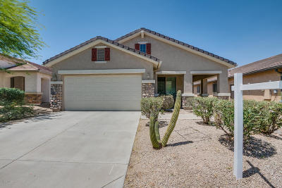 San Tan Valley Single Family Home For Sale: 32036 N Echo Canyon Road