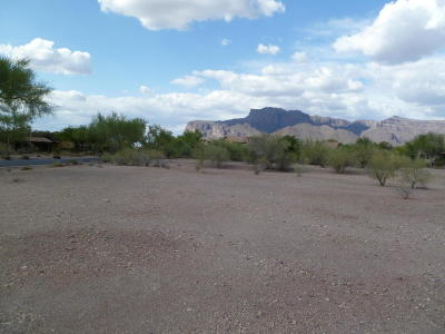 Superstition Mountain Residential Lots & Land For Sale: 3868 S Gambel Quail Way