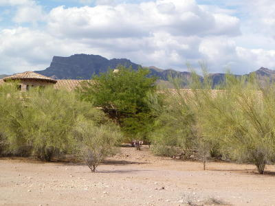 Gold Canyon Residential Lots & Land For Sale: 3828 S Gambel Quail Way
