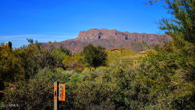 Superstition Mountain Residential Lots & Land For Sale: 8692 E Lost Gold Circle