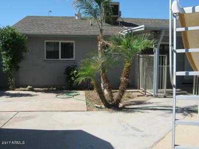Mesa Single Family Home For Sale: 1446 W Bentley Street