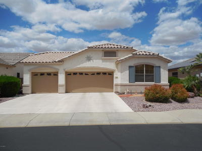 Surprise Single Family Home For Sale: 17848 W Addie Lane