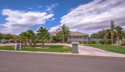 Queen Creek Single Family Home For Sale: 19638 E Sonoqui Circle