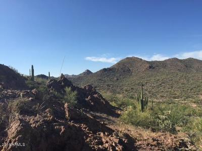 Queen Valley Residential Lots & Land For Sale: N Elephant Butte Road