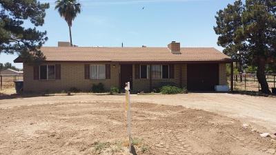 Queen Creek, San Tan Valley Single Family Home For Sale: 18601 E Via Del Jardin Street