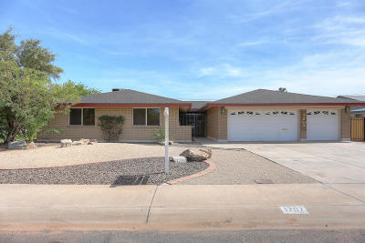 Tempe Single Family Home For Sale: 1207 E Loyola Drive