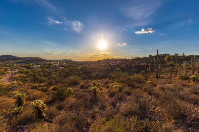 Gold Canyon Residential Lots & Land For Sale: 10164 E Lazy K Road
