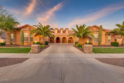Queen Creek Single Family Home For Sale: 22731 S 202nd Street