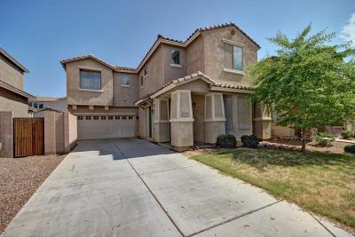 Gilbert Single Family Home For Sale: 3674 E Stampede Drive