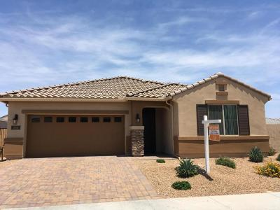 Chandler Single Family Home For Sale: 204 E Mead Drive