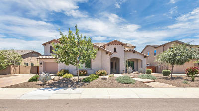 Gilbert Single Family Home For Sale: 867 E Bridgeport Parkway