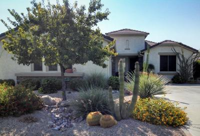 Pinal County Single Family Home For Sale: 32161 N Dog Leg Court