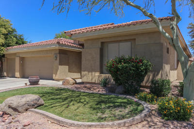 Chandler Single Family Home For Sale: 642 W Wildhorse Drive