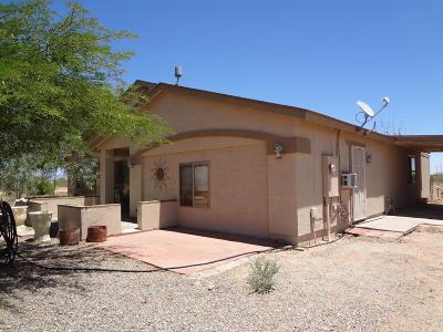 Wittmann Single Family Home For Sale: 28519 N 253rd Avenue