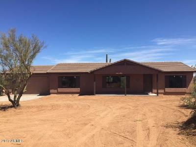 Scottsdale Single Family Home For Sale: 28305 N 139th Street