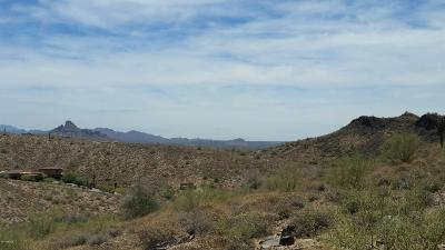 Fountain Hills Residential Lots & Land For Sale: 10729 N Ventura Court