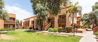 Mesa Multi Family Home For Sale: 225 Gilbert Road